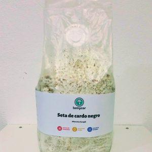 kit cultivo setas cardo coreano