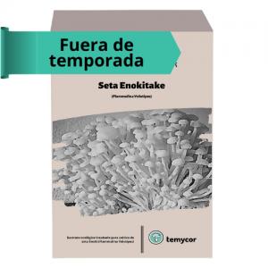 Bolsa de cultivo setas enoki
