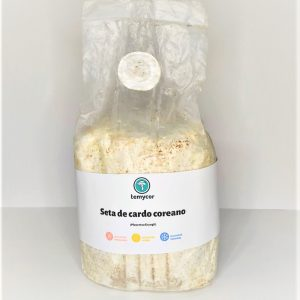 kit para cultivo de setas de cardo coreano