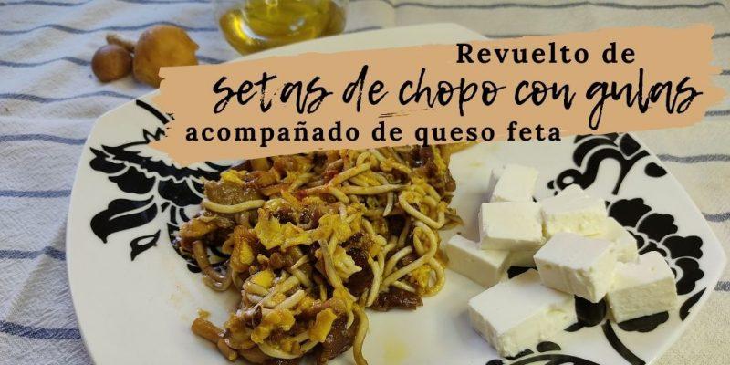 Receta seta chopo gulas queso feta